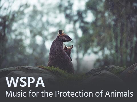 wspa-music-for-film-composer2