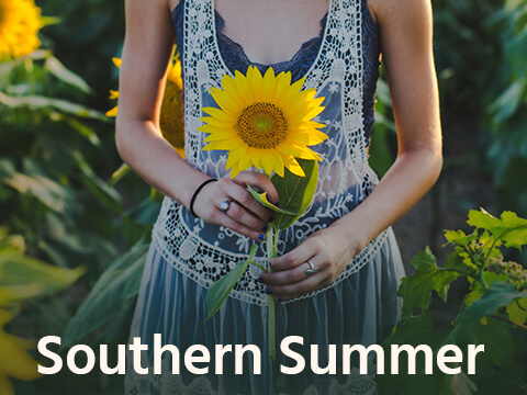 southern-summer-music-for-tv-comoser